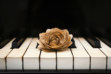 Rose Made Of Music Notes On Pi...