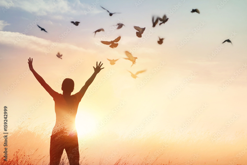 Fototapeta Woman praying and free bird enjoying nature on sunset background, hope concept