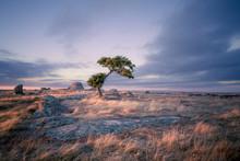 Beautiful Australian Landscape...