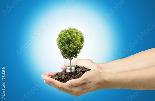 Photo Stands Roe Tree in light bulb with soil on hands , idea or energy and environment concept with clipping path