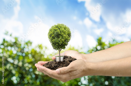 Acrylic Prints Roe Tree in light bulb with soil on hands , idea or energy and environment concept