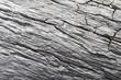 Holz Textur / Rustikaler grauer Holz Hintergrund mit Struktureffekt.