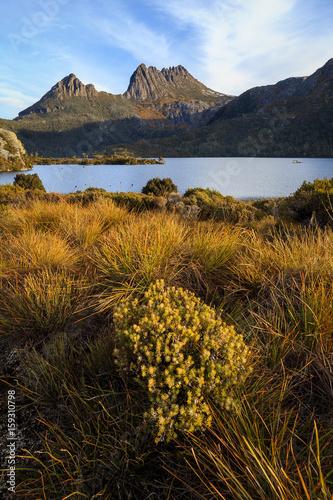 Wallpaper Mural Cradle mountain at golden hour, Tasmania