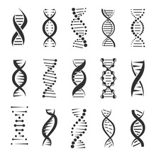 Double DNA Helix Vector Icons