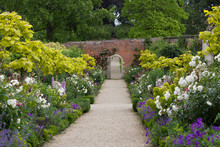 The Walled Garden At Buscot Pa...