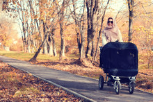 Mother In A Park Stroller Autumn