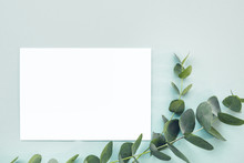 Flat Lay Eucalyptus Branches And Blank White Sheet On Blue Background, Top View. Mock Up