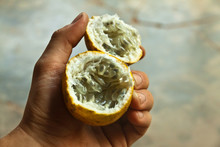 Passion Fruit In The Handwith ...