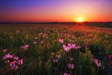 Wah'Kon-Tah Prairie At Sunset