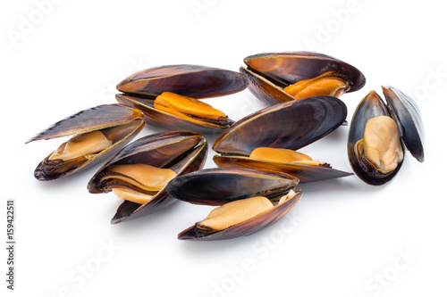 Mussels isolated on white background. Sea food.
