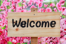 Welcome Sign On Wood Board Aga...