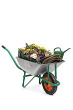 Wheelbarrow Filled With Flower...