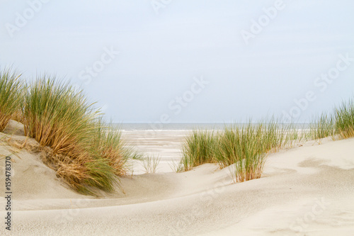 View between two dunes grown with Marram grass on a vast beach and the sea