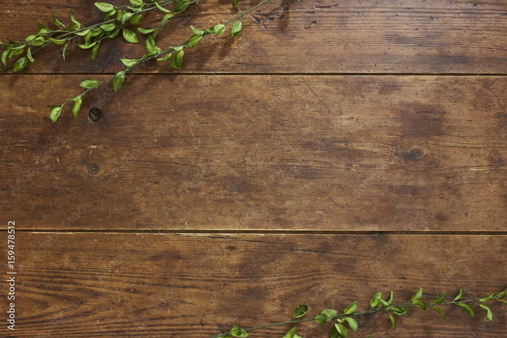 Fototapeta Tree branch on rustic wood background
