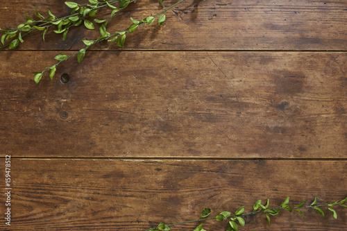 Foto auf Leinwand Holz Tree branch on rustic wood background