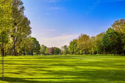 Fotografía City park. Panorama of a beautiful  park