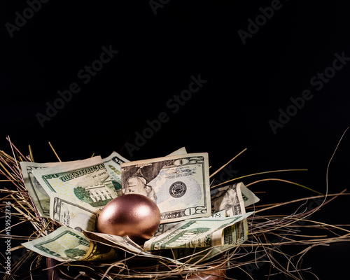 Fototapeta Nest Egg Concept obraz