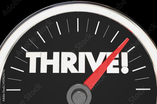 Thrive Word Speedometer Rise Succeed 3d Illustration Buy This