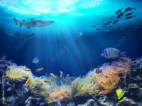 Staande foto Koraalriffen Marine life in reef. 3D illustration