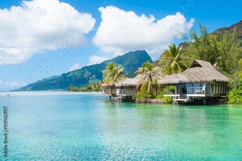Deurstickers Tropical strand tropical