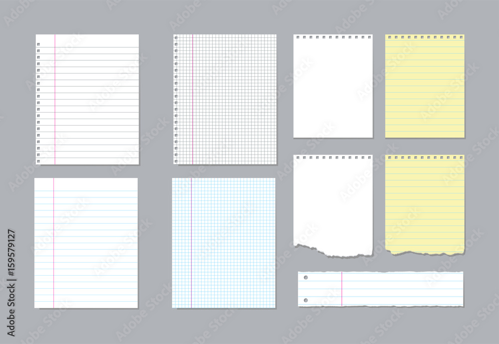 Fototapeta Set of different notebook pages and pieces of torn notebook paper. Vector illustration