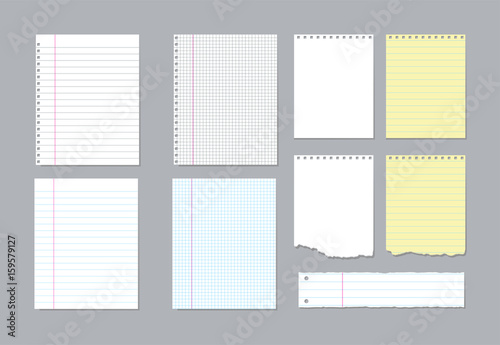 Foto  Set of different notebook pages and pieces of torn notebook paper