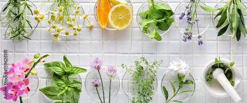 La pose en embrasure Condiment Fresh herbs