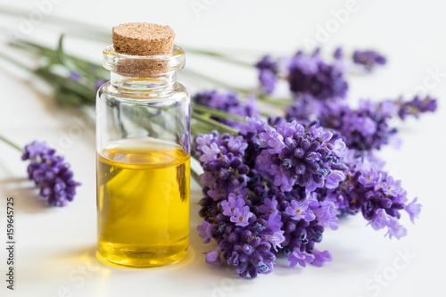 Photo  A bottle of essential oil with fresh lavender twigs