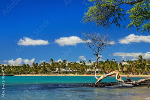 Fototapety, obrazy: Anaehoomalu Bay