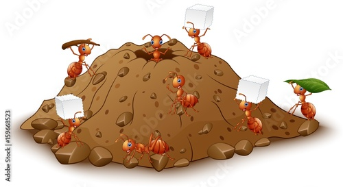 Cartoon ants colony with anthill Canvas Print
