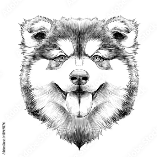 Deurstickers Hand getrokken schets van dieren dog breed Alaskan Malamute puppy with his tongue hanging out, head looking right symmetry sketch vector graphics black and white drawing