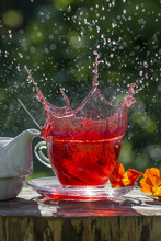 Fruity Tea Splash On The Garde...