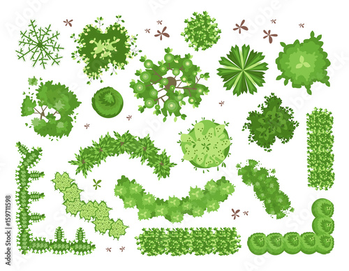 Poster White Set of different green trees, shrubs, hedges. Top view for landscape design projects. Vector illustration, isolated on white background.