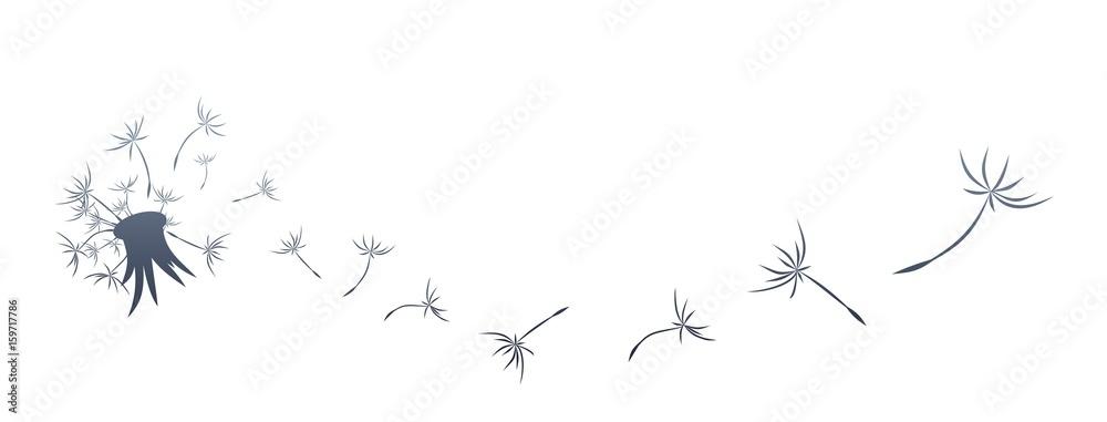 Fototapety, obrazy: Dandelion Logo.