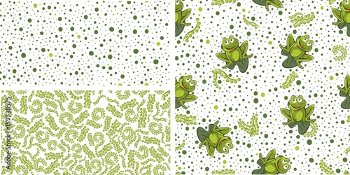Fototapeta Frog seamless background. Vector illustration.. Set obraz