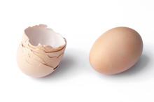 Egg And Eggshell Isolated On White Background