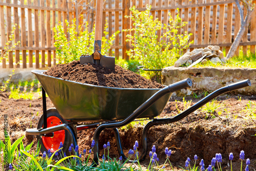 Wheelbarrow full of soil in a garden Canvas Print