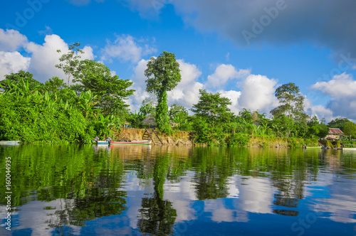 Photo Stands United States Jungle reflected on the river, inside of the amazon rain forest of Cuyabeno Natiional Park in Ecuador