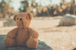 Bear doll sit alone vintage style