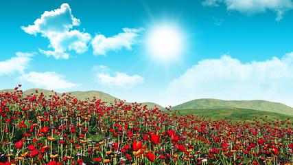 Fototapeta3D poppy field landscape