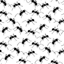 Black Ants On White Seamless B...
