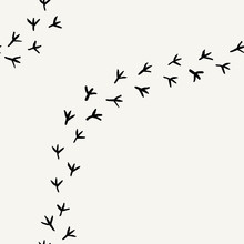 Seamless  Background With Bird's Tracks. Hand Drawn Texture.