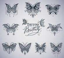 Butterflies Graphic Illustration