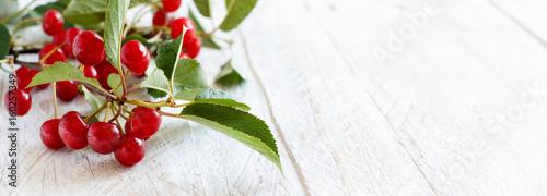 Carta da parati Fresh sour cherries