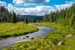 Leinwandbild Motiv Flusslauf im Nationalpark, Waldbach