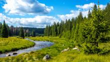 Flusslauf Im Nationalpark, Wal...
