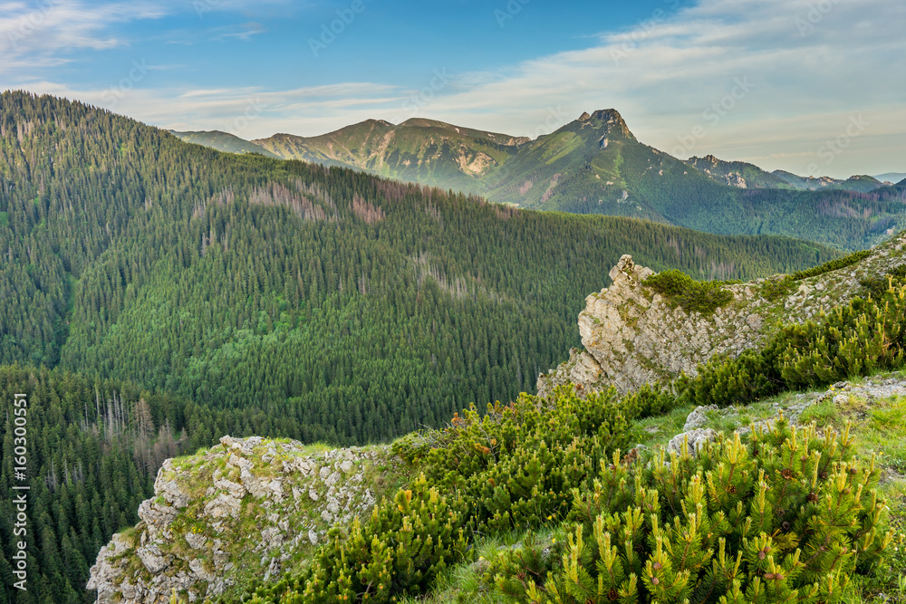 Fototapety, obrazy: Giewont; Tatra mountains landscape
