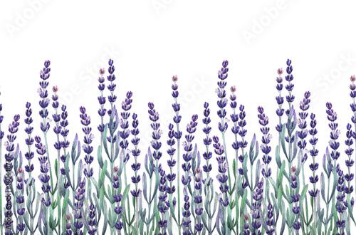 Spoed Fotobehang Lavendel Watercolor lavender design
