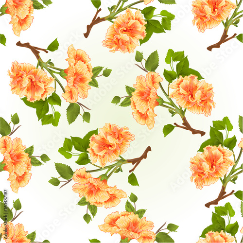 Seamless texture branch yellow hibiscus tropical flowers  on a white background vintage  vector illustration hand draw - 160487197