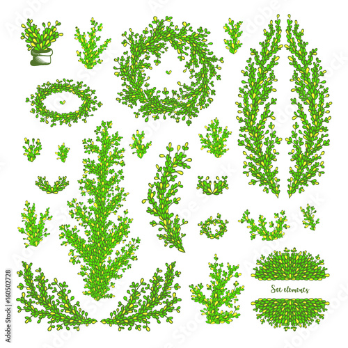 Printed kitchen splashbacks White Hand drawn vector twigs and branches with leaves.